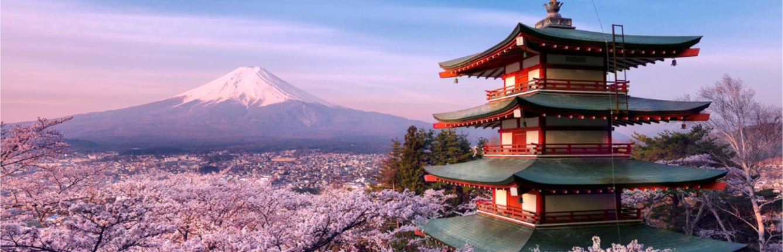 Японія, цвітіння сакури